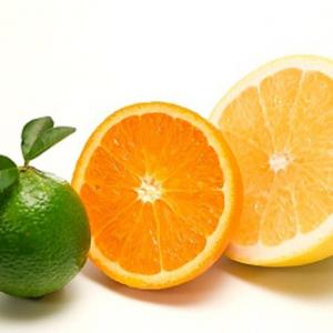 Múi cây cam v2
